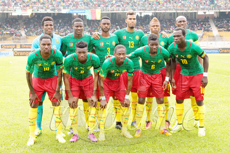 lions-indomptables-new-look